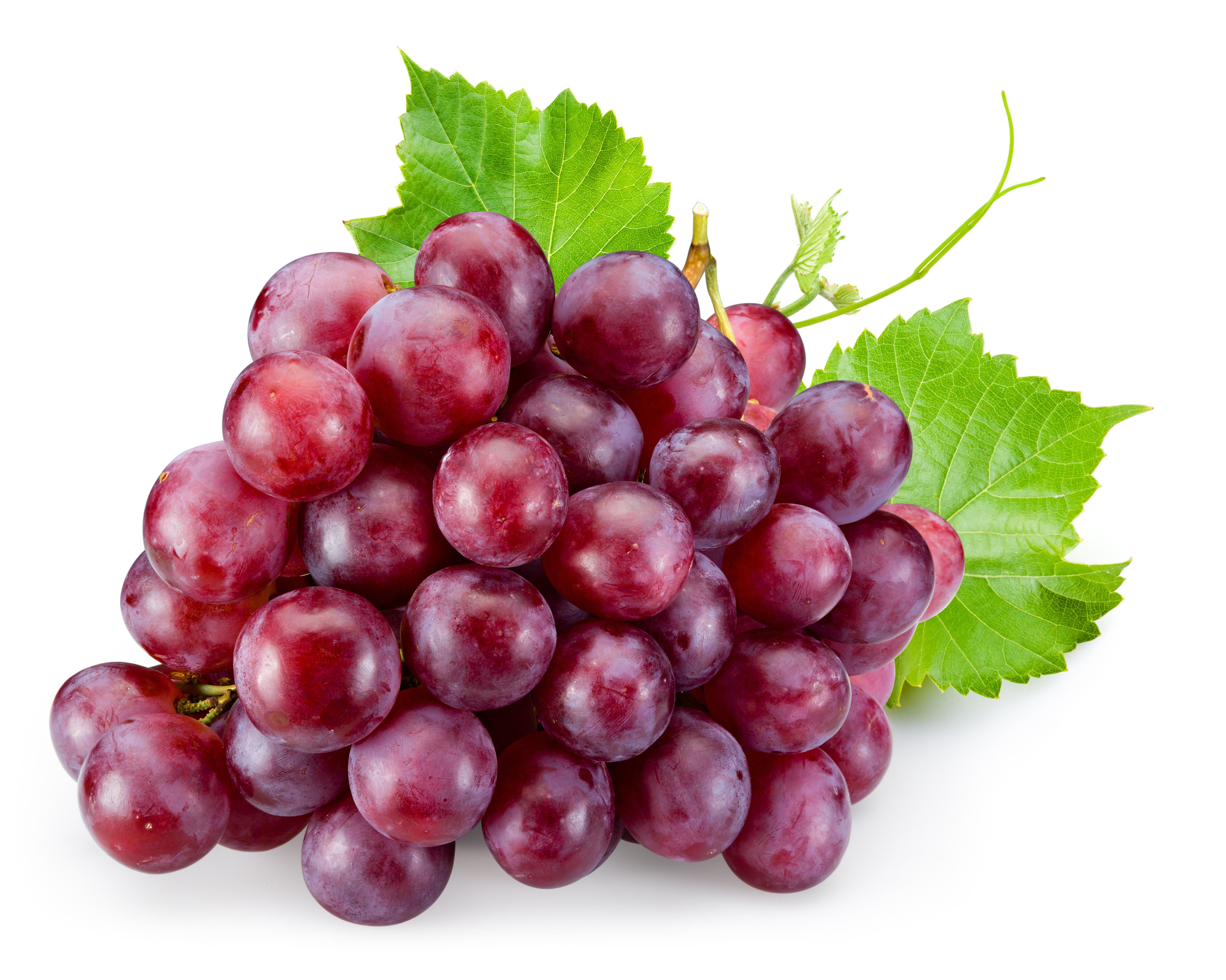 Save 20% On Grapes With New SavingStar Offer