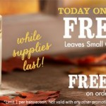 FREE Bath & Body Works Leaves Candles With ANY Purchase + FREE Shipping