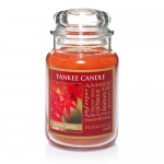 Yankee Candle – Great Deal On Large Jar Candle