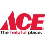 Ace Hardware Black Friday Ad