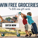 $1000 Summer BBQ Giveaway – 100 Win $10 Visa Giftcards
