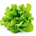 Save 20% On Loose Lettuce With New SavingStar Offer